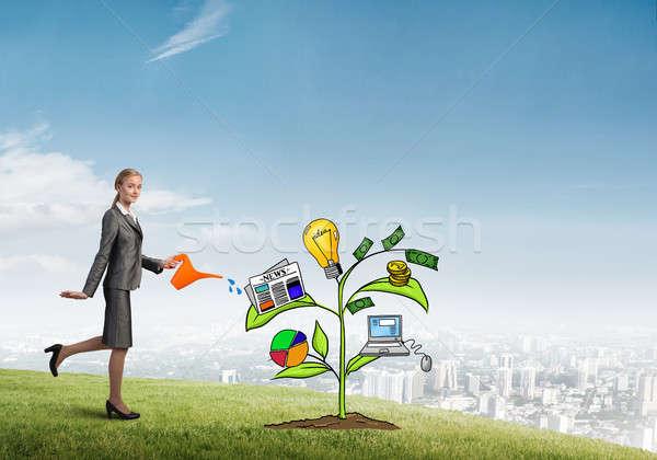 Giovani imprenditrice esterna crescita Foto d'archivio © adam121