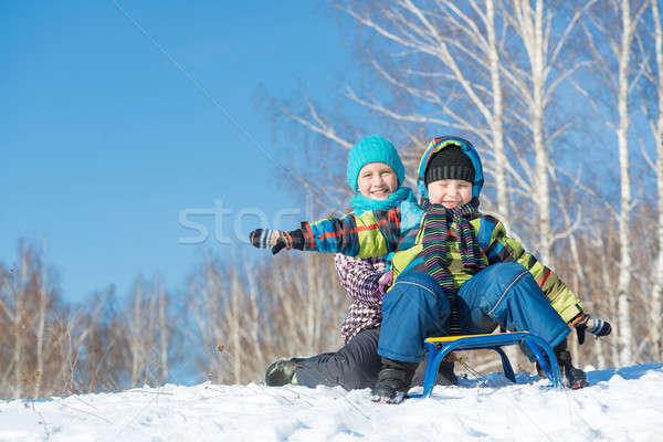 Kış etkinlik iki sevimli çocuklar binicilik Stok fotoğraf © adam121
