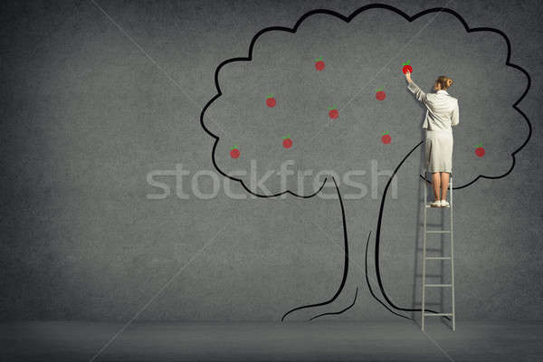 Business woman harvests from the tree Stock photo © adam121
