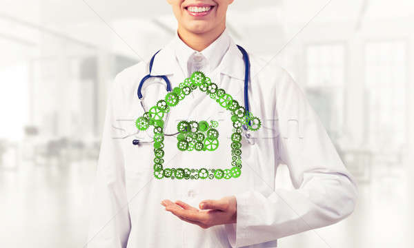 Symbol of homepage or accomodation made with cogwheels presented Stock photo © adam121