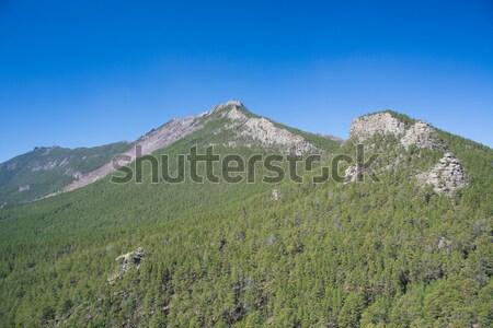 Kazakhstan mountains Stock photo © adam121