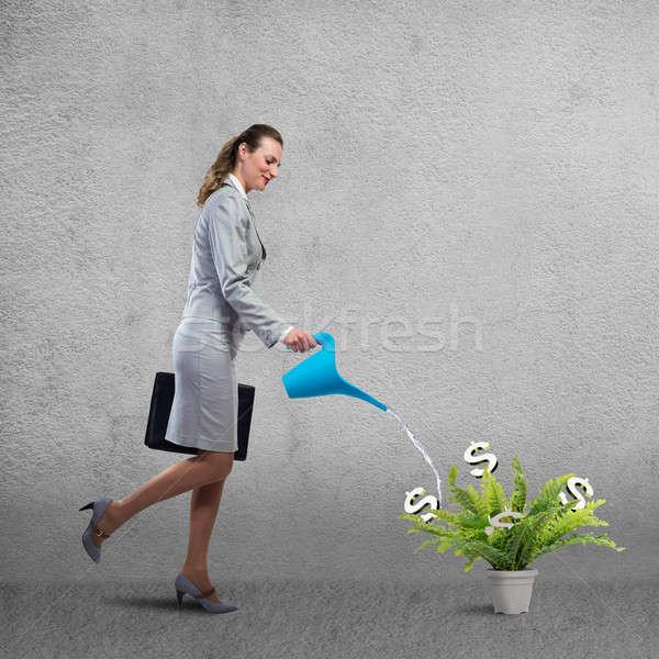 доход бизнеса деловая женщина можете доллара Сток-фото © adam121