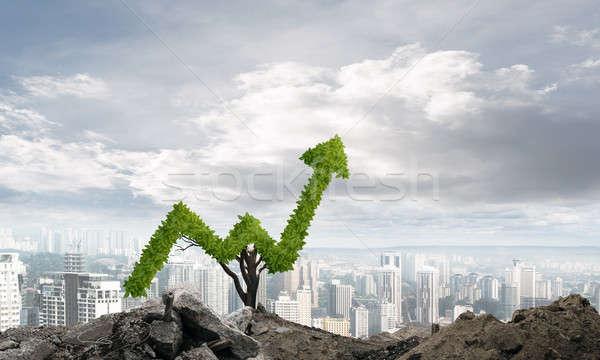Richtig Investitionen Einkommen Markt Wachstum Erfolg Stock foto © adam121