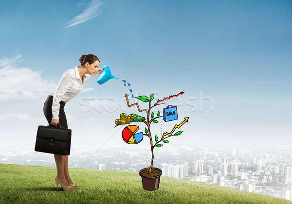 Jeunes femme d'affaires extérieur croissance Photo stock © adam121
