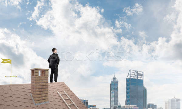 Bay patron tuğla çatı silah karışık Stok fotoğraf © adam121