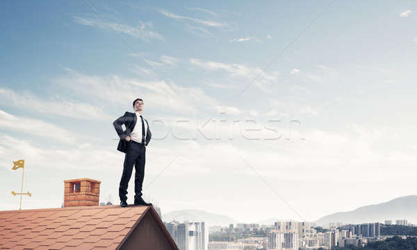 Stock photo: Mister boss on brick roof with arms akimbo. Mixed media