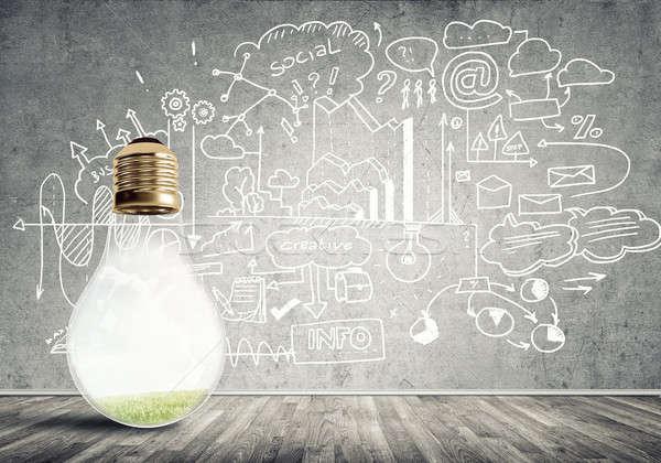 Hatékony társasági marketing üveg izzó villanykörte Stock fotó © adam121