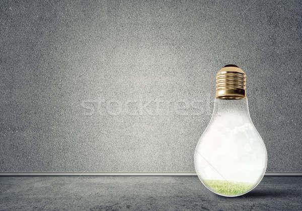 Light bulb in room Stock photo © adam121