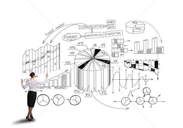 Successful marketing plan Stock photo © adam121