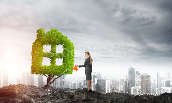 Make your money grow Stock photo © adam121