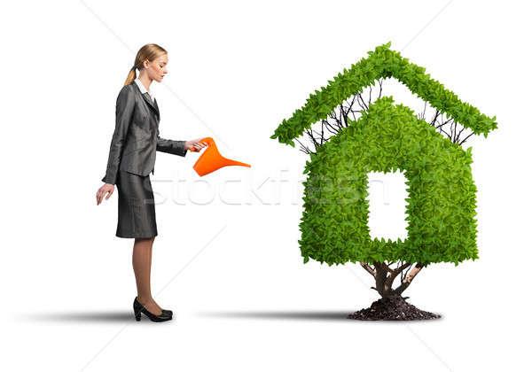 Dinheiro crescer jovem atraente empresária Foto stock © adam121