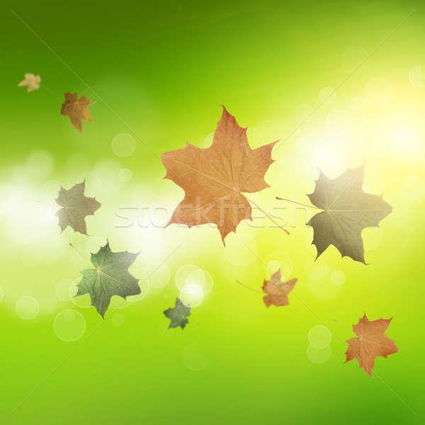 Jesienią tle obraz pozostawia pływające niebo Zdjęcia stock © adam121