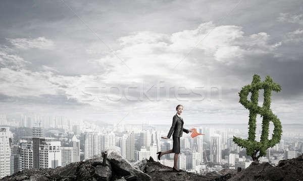Geld groeien jonge aantrekkelijk zakenvrouw Stockfoto © adam121