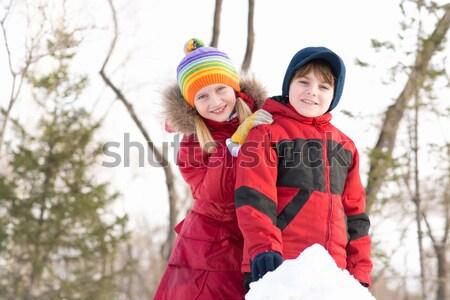 çocuklar kış park oynama zaman açık havada Stok fotoğraf © adam121
