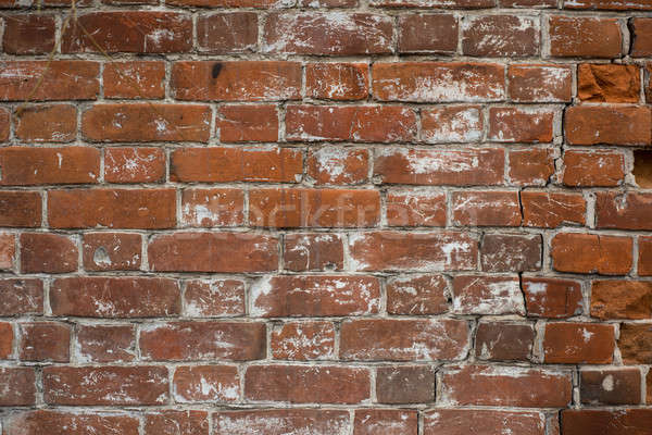 brick wall texture Stock photo © adam121
