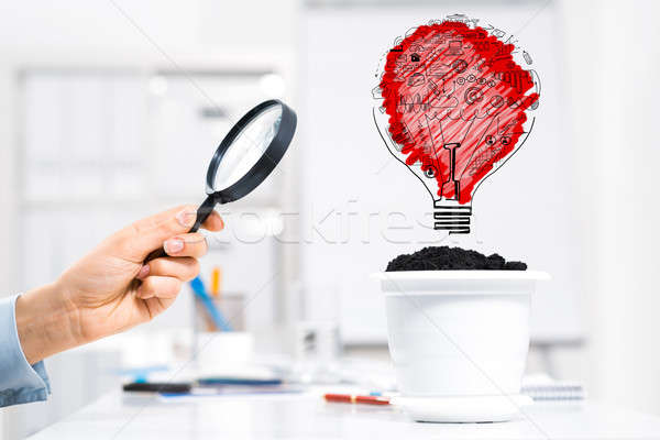 Invest and grow your income Stock photo © adam121