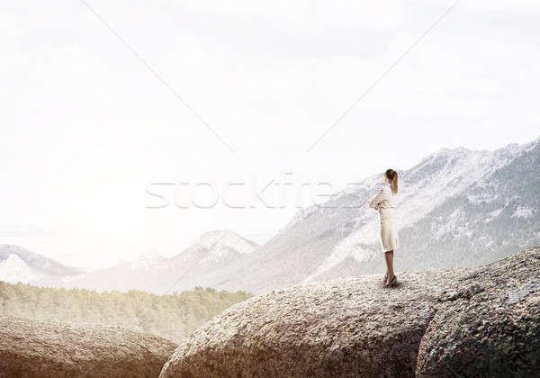 Achieving top of success Stock photo © adam121