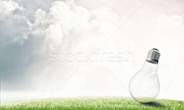 Alternative solar energy concept Stock photo © adam121