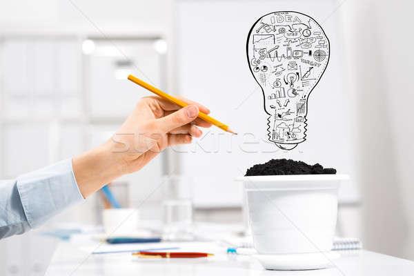 Wachsen Einkommen Hand Zeichnung Bleistift Stock foto © adam121