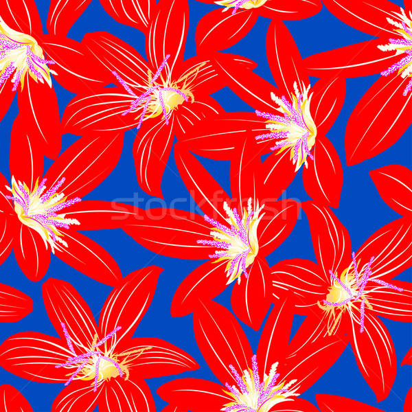 Vermelho tropical hibisco floral projeto Foto stock © adamfaheydesigns