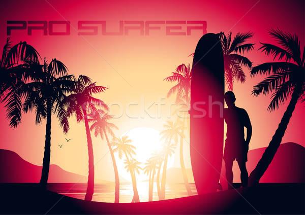 Szörfözik fickó napfelkelte trópusi tengerpart víz nap Stock fotó © adamfaheydesigns
