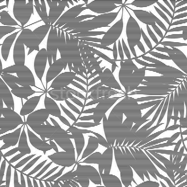 Branco preto listrado tropical folhas Foto stock © adamfaheydesigns