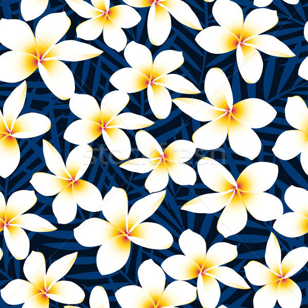 Tropical white frangipani plumeria flower seamless pattern Stock photo © adamfaheydesigns