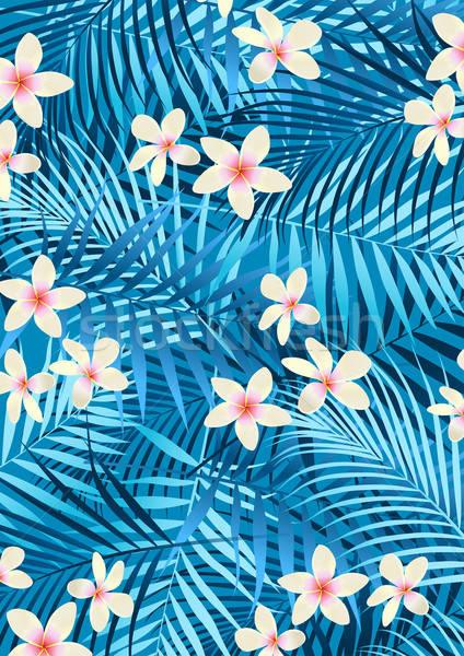 Blue frangipani Stock photo © adamfaheydesigns