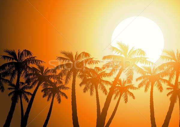 Tropische palmbomen silhouet zonsopgang hemel natuur Stockfoto © adamfaheydesigns