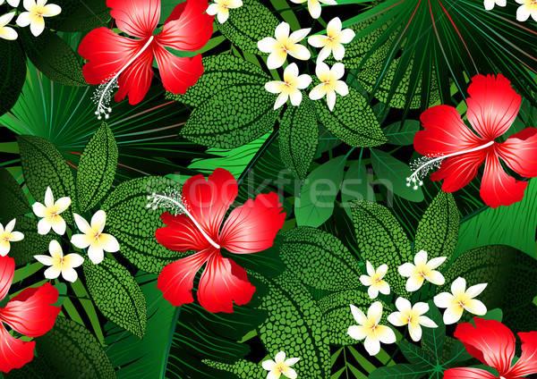Részletes trópusi virágok növények illusztráció virág Stock fotó © adamfaheydesigns