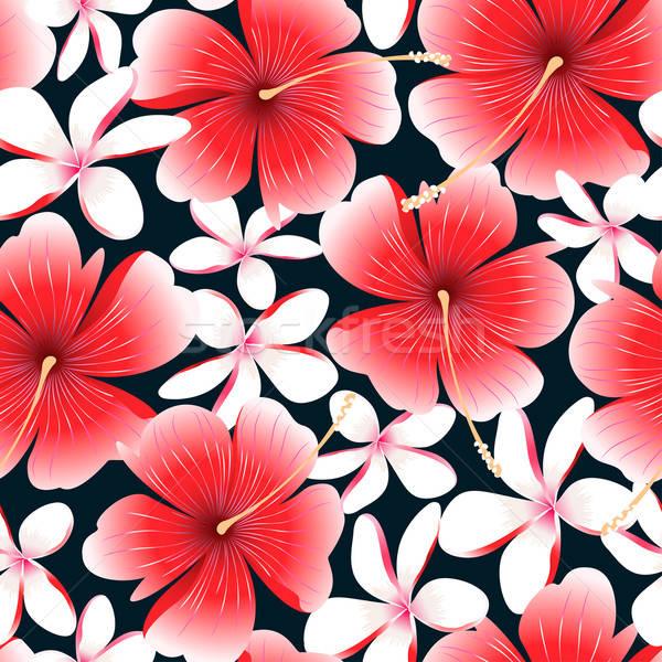 Vermelho tropical hibisco flor natureza Foto stock © adamfaheydesigns