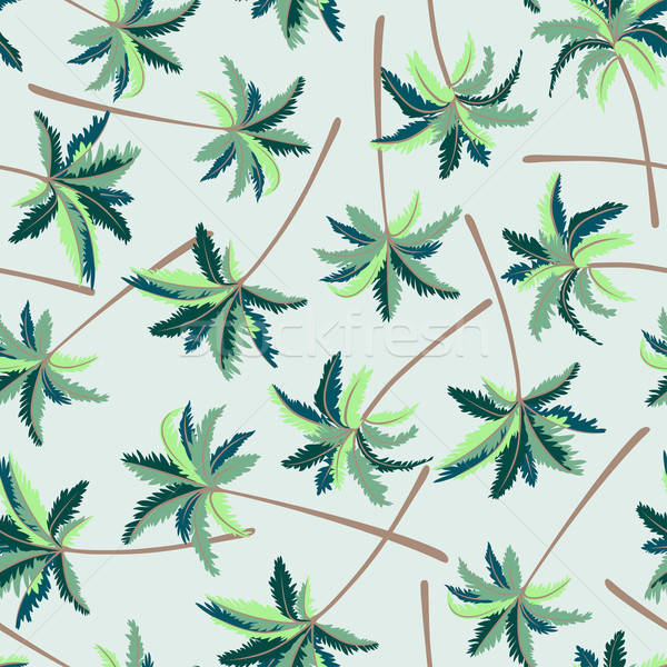 Tropical australiano palma natureza folha Foto stock © adamfaheydesigns