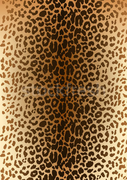 Leopard spotted fur pattern Stock photo © adamfaheydesigns