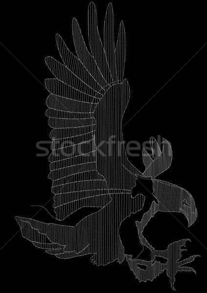 Águia bordado branco preto moda pássaro Foto stock © adamfaheydesigns