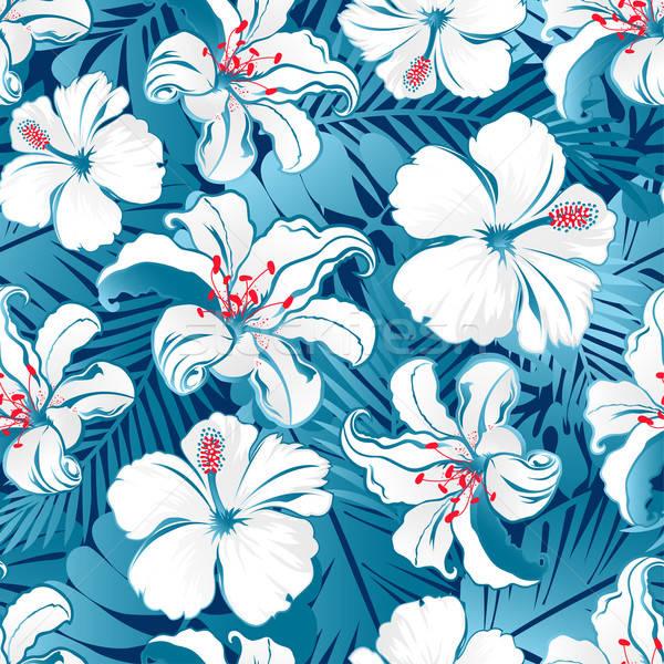 White tropical hibiscus flowers. Stock photo © adamfaheydesigns
