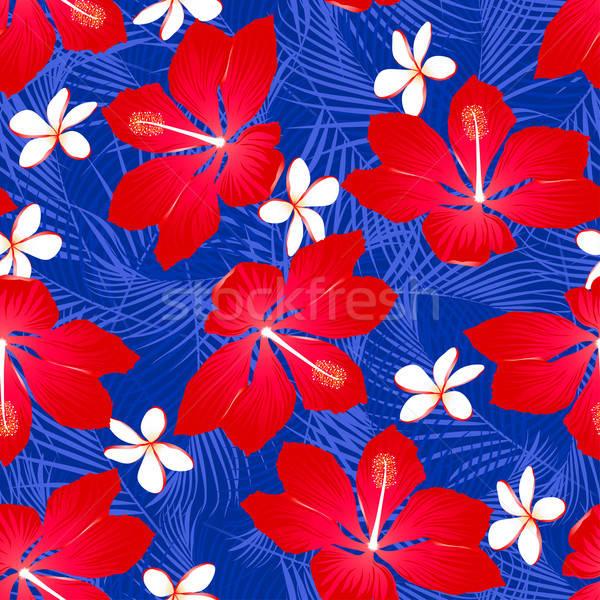 Tropical folhas de palmeira hibisco flores branco Foto stock © adamfaheydesigns