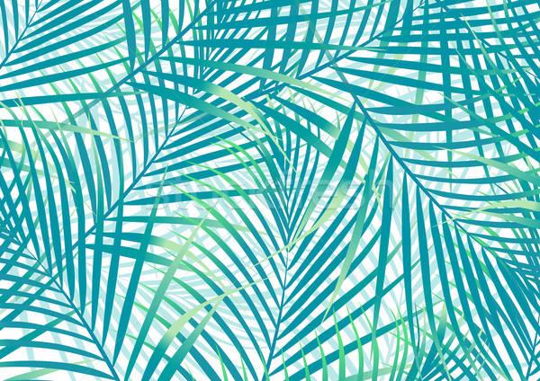 Zöld kék pálmalevelek háttér növény Stock fotó © adamfaheydesigns