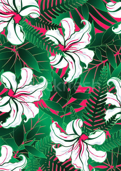 White tropical flowers with green leaves and red background Stock photo © adamfaheydesigns
