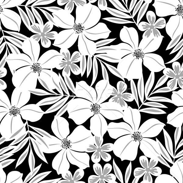 Branco flor tropical preto Foto stock © adamfaheydesigns
