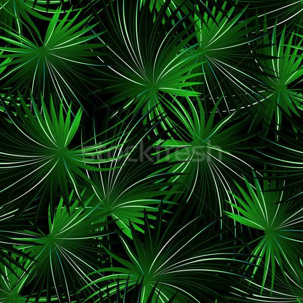 Trópusi káposzta pálma végtelen minta erdő levél Stock fotó © adamfaheydesigns