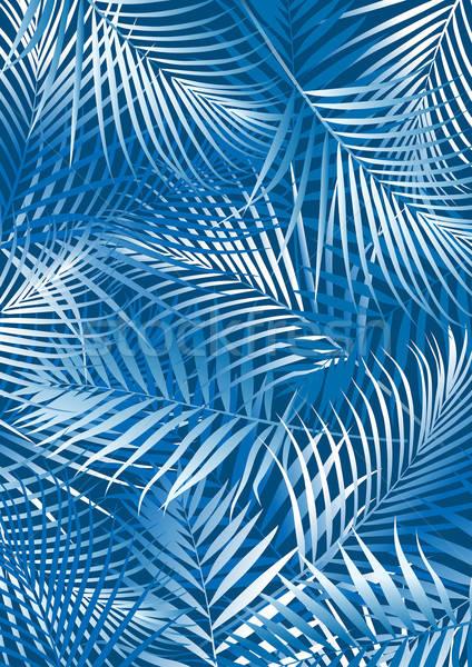 тропические синий пальмовых листьев белый лист Сток-фото © adamfaheydesigns