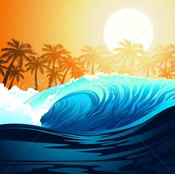 Trópusi szörfözik hullám napfelkelte pálmafák égbolt Stock fotó © adamfaheydesigns