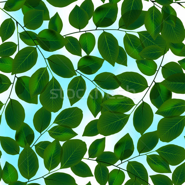 Green leaves canopy and sky in a seamless pattern Stock photo © adamfaheydesigns