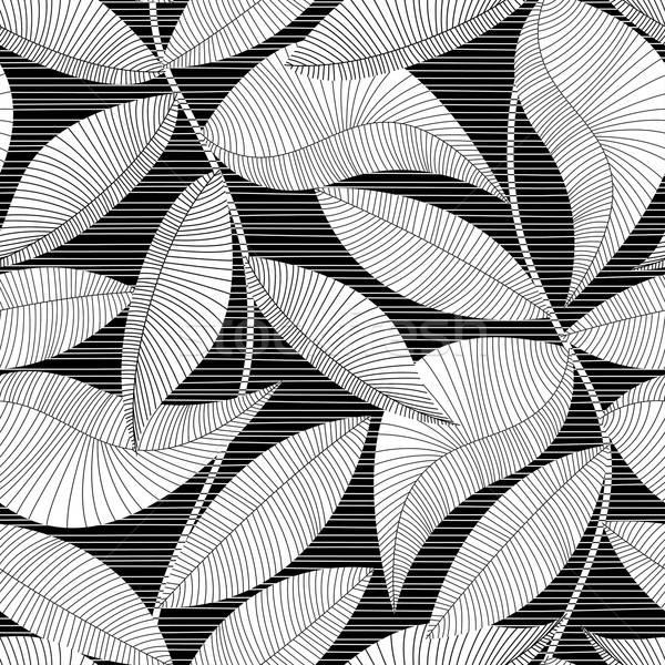 Feketefehér csíkos textúra trópusi végtelen minta terv Stock fotó © adamfaheydesigns