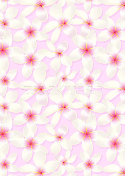 Сток-фото: белый · цветы · розовый · дерево · моде · тропические