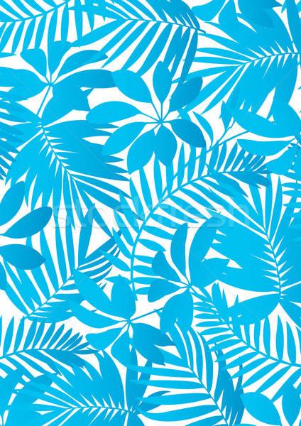 Trópusi kék növények virágok absztrakt természet Stock fotó © adamfaheydesigns