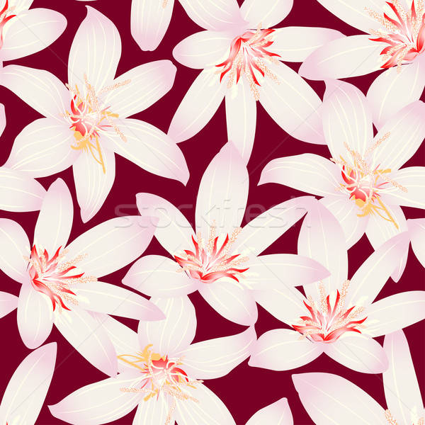 White tropical hibiscus floral design seamless pattern Stock photo © adamfaheydesigns