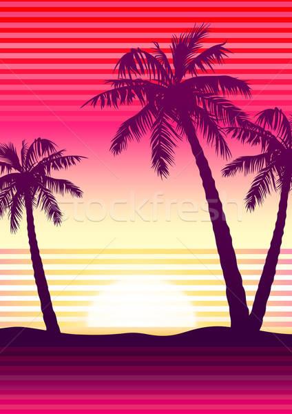 Pálmafák naplemente csíkok tengerpart fa tájkép Stock fotó © adamfaheydesigns