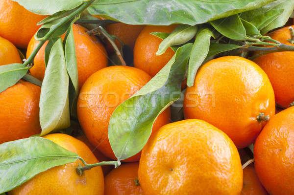Saine fruits vert fraîcheur aliments et boissons Photo stock © advanbrunschot