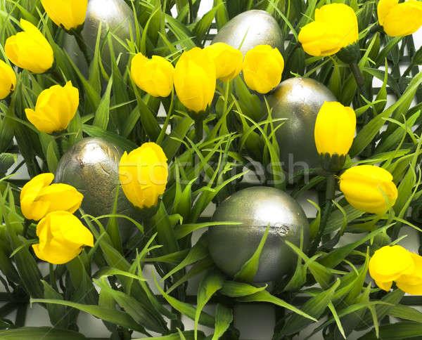 Pascua huevos de Pascua oculto hierba huevos Foto stock © advanbrunschot